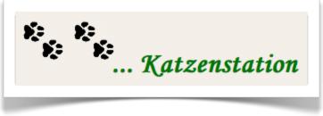 Jw_katzenstation